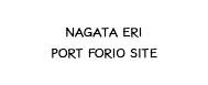 ERI NAGATA   Portforio   site